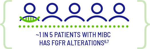 Five blue human icons and one has a green double helix under it. About one in five patients with M I B C has F G F R alterations